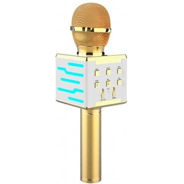 Ασύρματο μικρόφωνο Επαγγελματικό με Ενσωματωμένο Ηχείο gold– ds868 – OEM