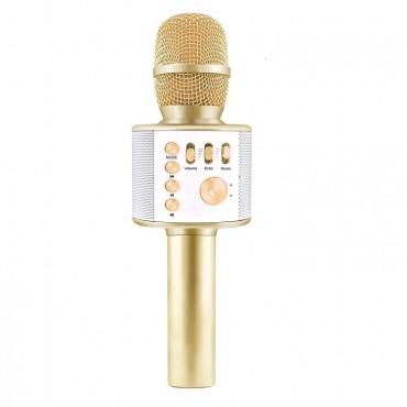 Ασύρματο Bluetooth ηχείο - καραόκε μικρόφωνο με USB ή MicroSD χρυσό Η12