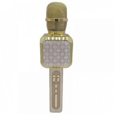 Ασύρματο μικρόφωνο Επαγγελματικό με Ενσωματωμένο Ηχείο gold – YS-05 – OEM