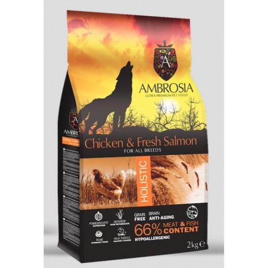 Ambrosia Grain Free Adult - Κοτόπουλο-Φρέσκος Σολομός (2kg)