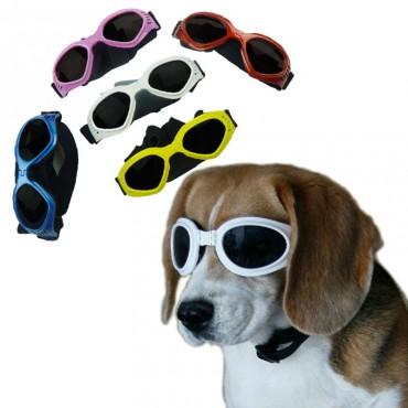 Γυαλιά ηλίου για σκύλους