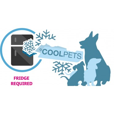 Cool pet ice cube