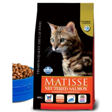 Matisse neutered salmon 10kg